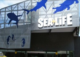 SealifeFront